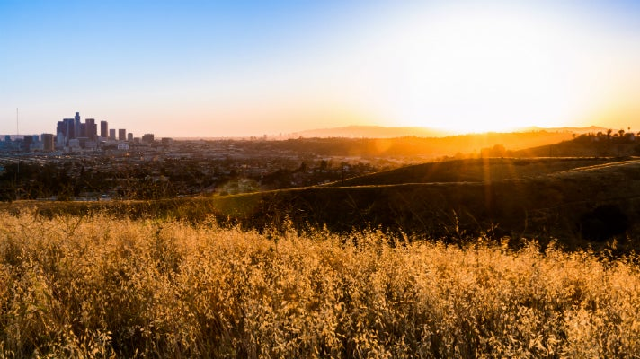 Ascot Hills Park at sunset