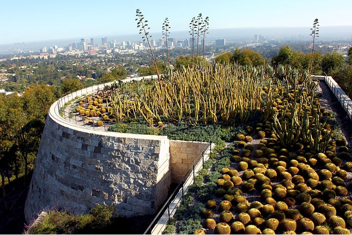 Cactus garden at the Getty Center